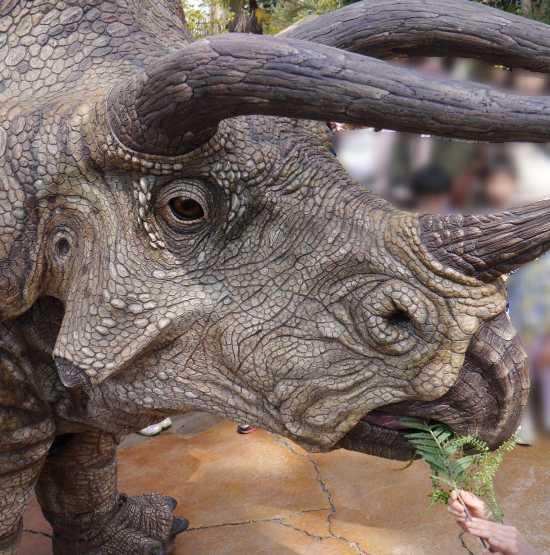 トリケラトプス 草食恐竜