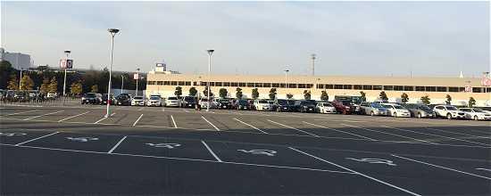 開園前駐車場混雑